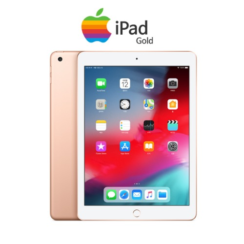 iPad Mini 9.7형 골드 [32GB / Wi-Fi + Cellular]